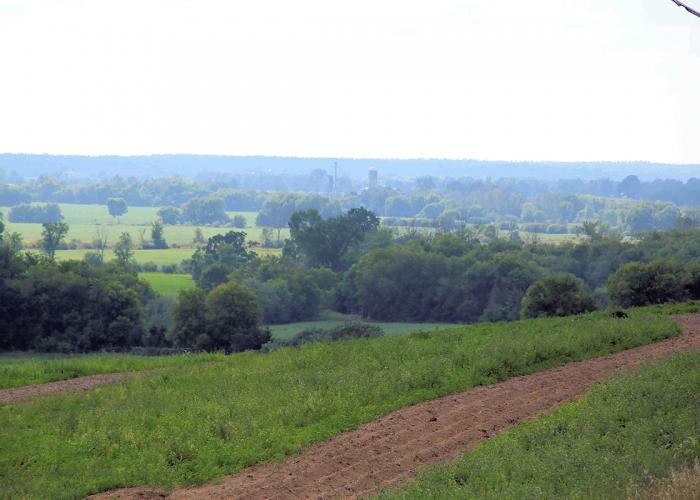 Carp-Ridge-IMG_1132