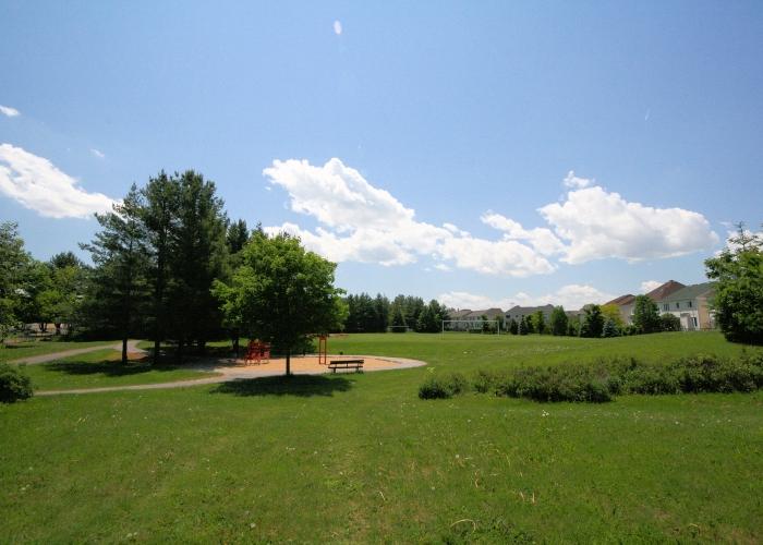 Morgans-Grant-Woods-Park-IMG_4959
